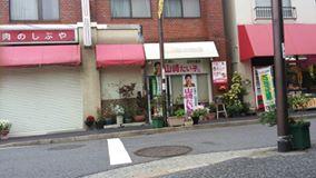 11175041_utunomiya5
